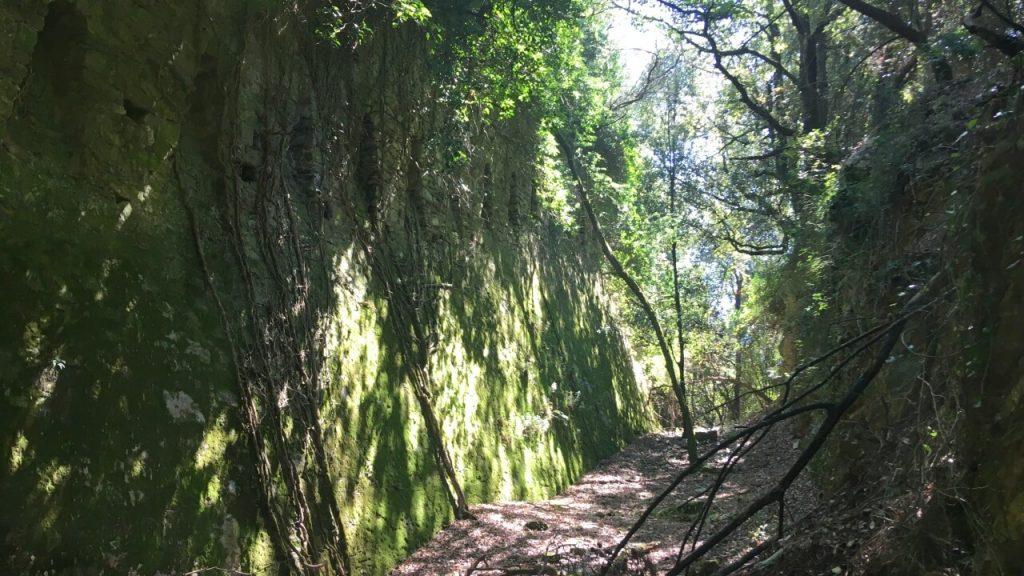 Il fossato e le alte mura di Forte Cavour