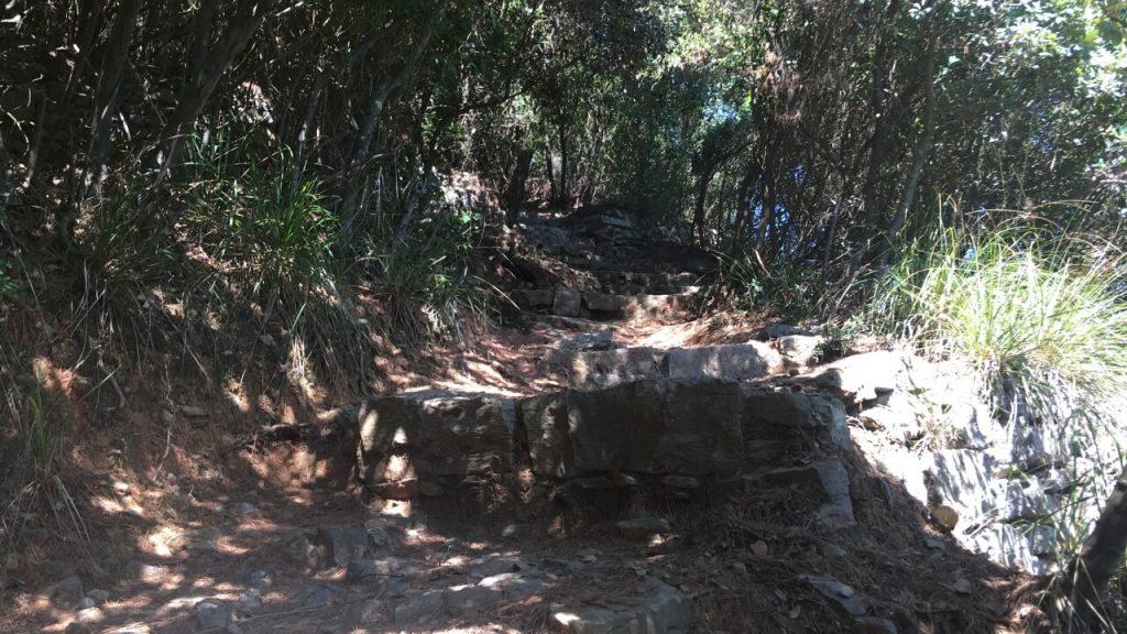Scalinata in sasso che sale da Pozzale verso la cima dell'Isola Palmaria
