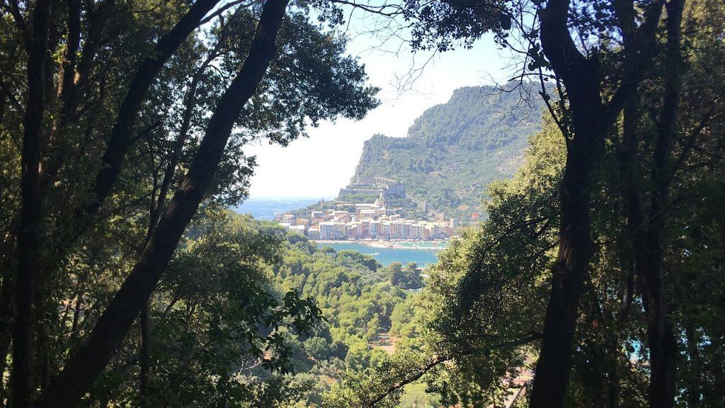 Scorcio fra la vegetazione su Portovenere