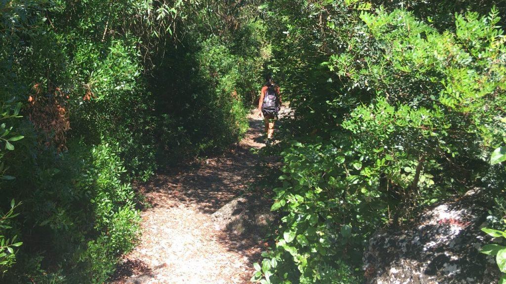 Sentiero vicino al Forte Umberto I