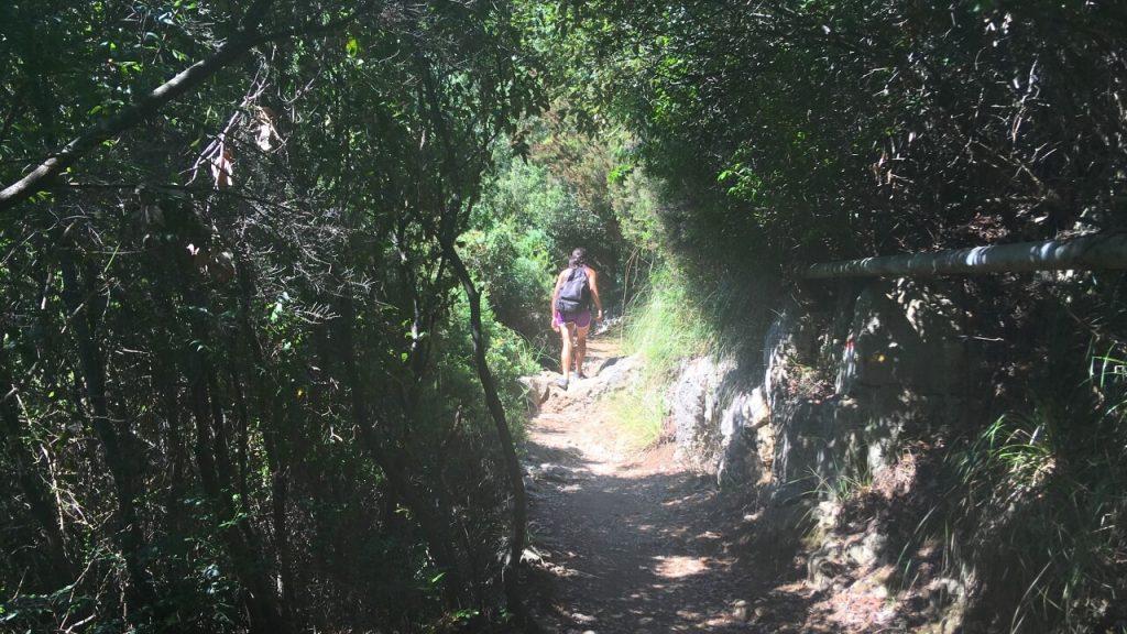Sentiero verso Pozzale