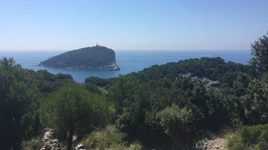 Panorama sull'Isola del Tino poco sopra Pozzale